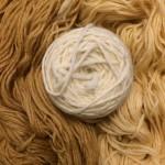 Roter Holunder - Weiße Wolle - Flechten